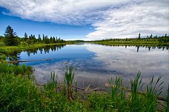 Gaetz Lake Santuary (Matthew P Sharp) Tags: lake canada alberta hdr reddeer