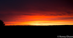 DSC_2446.jpg (SWECRool) Tags: sunset nikon sp af tamron xr ld diii 175028 d7100 nikond7100 tamronafsp175028xrdiiild