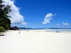 Palau island beach (mattk1979) Tags: blue beach water island paradise turquoise pacificocean tropical palau rockislands