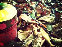 Candle (cMonk3y) Tags: autumn leaf candle herbst kerze blatt leafs bltter flickrandroidapp:filter=mammoth