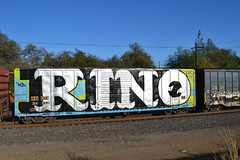 (huntingtherare) Tags: train graffiti king freight rino king157 rollingstock wholecar