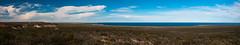El Doradillo (faltimiras) Tags: patagonia pinguinos puerto lions whales peninsula valdes argetina madryn magallanes wt leones elefants guanacos ballenas elefantes marinos lleons balenes elephatns coiches
