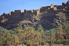 (orientalizing) Tags: landscape ruins palmtrees oasis morocco antiatlas mudbrick alnif rten12
