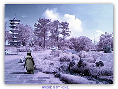 Infrared Photography @ Chinese Garden. (cpark188) Tags: landscape ir picasa gimp olympus infrared chinesegarden irphotography paintnet