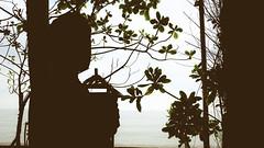 DSCF6918 (Maki roll) Tags: beach indonesia balikpapan fujix100