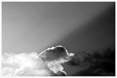 Sunset beam (Zelda Wynn) Tags: bw weather auckland artgalleryofnsw cloudscape troposphere zeldawynnphotography