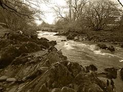 The Dryfe Water as it passes through Boreland located on the Lockerbie to Eskdalemuir road (B723) (penlea1954) Tags: uk bw white black water scotland waters dumfries galloway annandale boreland lockerbie eskdalemuir b723 dryfe