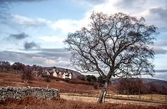 Invermark Lodge (RiserDog) Tags: scotland angus angusglens glenesk lochlee invermark tarfside invermarklodge