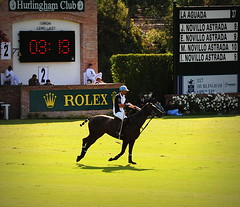 117th Hurlingham Club Open Championship, Argentina / 117° Abierto de Hurlingham YPF (Σταύρος) Tags: vacation horse holiday latinamerica southamerica argentina argentine leather cheval nikon pony 70300mm polo rtw pferd vacanze tack hest roundtheworld paard sudamerica triplecrown 馬 polopony américadosul américalatina globetrotter southernhemisphere zonasul amériquelatine polomatch лошадь poloclub argentinien 16days 阿根廷 hurlingham equidae onhorseback américadelsur südamerika zonea hurlinghamclub worldtraveler άλογο ariannin 南美洲 repúblicaargentina littleeurope laaguada アルゼンチン americadelsud chukkas argentinerepublic 皮革 argentinidad pologame poloteam ladolfina الأرجنتين 아르헨티나 d700 zonaa nikond700 chukkers abiertodehurlingham αργεντινή triplecorona 117thhurlinghamopen hurlinghamopen аргенти́на chukers tradiciondelpoloargentino