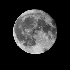 BW Full Moon (tommaync) Tags: sky blackandwhite bw moon white black nature oneaday blackwhite nc nikon january northcarolina fullmoon craters photoaday lunar pictureaday 2014 chathamcounty d40 digitalcameraclub project365 project365017 project365011714