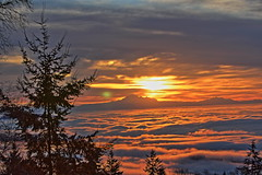Sunrise Jan18 (Shaken, not stirred 2013) Tags: mountain fog vancouver sunrise baker cypress