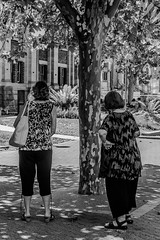 Camouflaged in Plain Sight (Pauls-Pictures) Tags: street city friends two people urban blackandwhite woman tree standing lens photography women pattern image photos candid patterns portait pair sony streetphotography 7 australia camouflage perth kit 1855 alpha westernaustralia photograhy streetphotos nex streetpics twoscompany streetphotograhy streetpictures sonynex7 sonyalphanex7 alphasonynex7