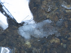 Some open water (jamica1) Tags: winter snow canada cold ice creek bc okanagan columbia mission british kelowna