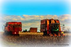 The Cotton Harvest (T i s d a l e) Tags: winter nikon farm january cotton tisdale 2014 d7100 cottonharvest