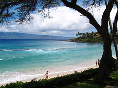 Maui May 2006 (rwa_in_SD) Tags: maui napili napilibay