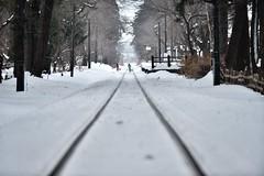 dash (shoshibata) Tags: winter snow train railway 雪 冬 鉄道 列車 津軽鉄道