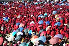 The morning recital at Yarchen Gar, Tibet 2013 (reurinkjan) Tags: dzogchen 2013 tsokpa yachengar བོད་ལྗོངས། ©janreurink tibetanplateauབོད་མཐོ་སྒང་bötogang tibetབོད buddhistསངས་རྒྱས་ཆོས་ལུགས་པ དགོན་པ་ nunneryཨ་ནི་དགོན་པ་anidgonpa monkགྲྭ་བ།grwaba buddhismསངས་རྒྱས་ཆོས་ལུགས།sangsrgyaschoslugs yarchengar greatertibetབོད་ཆེན་པོböchenpo tibetannationalitytibetansབོད་རིགས།bodrigs ཆུ་ nunཇོ་མོ།ani khamཁམས།easterntibet nyingmaredhatsectརྙིང་མrnyingma ༢༠༡༣ khamཁམས་བོད khamsbodkhamwö pelyülདཔལ་ཡུལ།county nyingmapahermitage yarchengarཡར་ཆེན་སྒར་ lamaachukrinpoche yellegar rinchenlingpa yachengönཡ་ཆེན་དགོན། yachengarཡ་ཆེན་དཀར་། stupaམཆོད་རྟེན༏mchodrtenchorten yarchengön dzinchu ཛིན་ tibetannationtibetanpeopleབོད་ཀྱི་མི་བརྒྱུད bökyimigyü sisterhoodཨ་ནིའི་ཚོགས་པani yarchengonpaཡར་ཆེན་