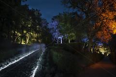 Ghosts (John Barratt) Tags: summer france dordogne ghosts candlelight jardindemarqueyssac