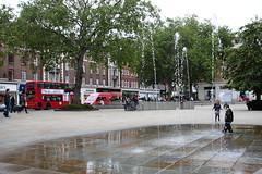 IMG_4839 (koemu) Tags: london partridges