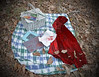 Little Red Riding Hood (BKHagar *Kim*) Tags: bkhagar littleredridinghood hood red picnic basket painting blood bloody wolf pleinair fairytale tale legend outdoor challenge julesphotochallengegroup