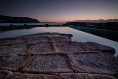 Whale Beach Sunrise (RoosterMan64) Tags: australia landscape leefilters longexposure nsw rockpool rockshelf seascape sunrise whalebeach