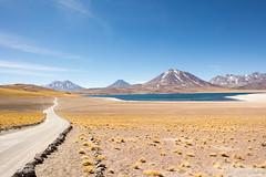 Camino en las Lagunas Antiplanicas (Gabriel Bonini Silvestre) Tags: atacama chile desertodoatacama lagunaminiques lagunamiscanti lagunasaltiplanicas sanpedrodeatacama