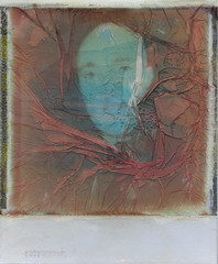 In time ('roid week Fall 2016 - 07) (ale2000) Tags: roidweek polaroid impossible sx70 roidweek2016 roidweek2016falledition polaroidweek ruined ruination soup souped manipulated portrait portraiture face viso visage man uomo image manipulation metabox