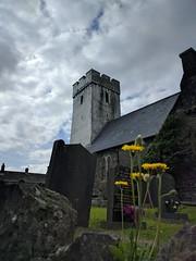 All Saints Church, Llansaint (deadmanjones) Tags: llansaint allsaintschurch dandelion churchtower churchyard gravestone