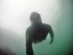 GOPR5920 (ambrogi_taubate) Tags: naturezaselvagem marinha mergulhando ubatuba sp brasil naturezamarinha fantstica apneia 10m setembro primavera 2016