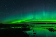 When Aurora Roars (Len Langevin) Tags: aurora borealis northernlights longexposure highiso sky alberta canada reflection lake water pillars landscape nature nikon d300s tokina 1116