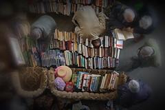 Libromanacos / Book Maniacs (Enrique Freire) Tags: spain libros barcelona espaa mercadillo mercado glories glorias