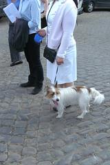 Lige22042011 035 A (Rumskedi) Tags: viacrucis monde chien europa europe rollei belgi belgique belgien lige lige22042011