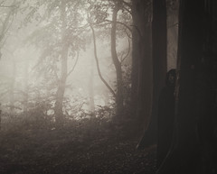 Using the mist to my advantage (Kathryns Photography) Tags: misty autumnmist canon750d texturedlandscape mythicallegend mysterious mythical halloween witch atmospheric gothic enchantedwoodland sepia woodland darkart creativephotography autumnal inspiration scenic