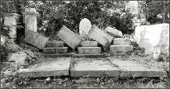 Abney Park Cemetery (Cul 9) Tags: abneypark cemetery gravestones headstones graveyard