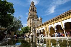 Crdoba - Mosque Cathedral (JOAO DE BARROS) Tags: mosque cathedral spain joo barros architecture monument