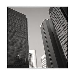 the gate to the modern world  osaka, japan  2015 (lem's) Tags: buildings towers immeubles urban urbain city ville osaka japon japan rolleiflex planar