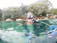 GOPR5941 (ambrogi_taubate) Tags: naturezaselvagem marinha mergulhando ubatuba sp brasil naturezamarinha fantstica apneia 10m setembro primavera 2016