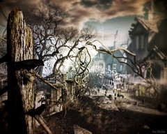 Even the darkest night will end ... (Iris Okiddo) Tags: foggy swam iris okiddo halloween scarey spooky desolate deserted abonadonned crow crows tree trees houses haunting