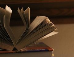 protect 1 (johnyjose) Tags: protect book