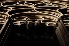 Sa llotja (amargureiro) Tags: palmademallorca palma mediterranean mediterrneo gothic window buildings arquitectura architecture gotico stones d80 1870mmf3545 nikon