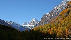 a Perfect day (_Nick Photography_) Tags: rhemesnotredame parconazionaledelgranparadiso nationalpark nickphotography autunno autumn fall img8205 canoneos6d alps alpineautumn