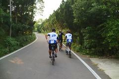 關西竹 16-1 鄉道.繼續前進 (nk@flickr) Tags: 關西 bobby taiwan 新竹 friend cycling 台湾 cheven 20161105 台灣 guanxi hsinchu 阿強 canonefm22mmf2stm