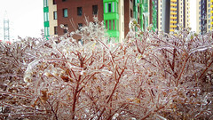 2016-11-11 10-13-10 (weltonpark) Tags: