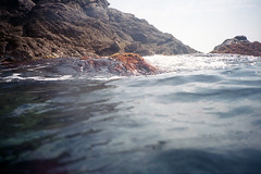 film (La fille renne) Tags: film analog lafillerenne 35mm lomography lomolca lomography400 snorkeling sea roadtrip portcros travel underwater krab landscape nature