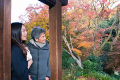 Japanese couple traveling to enjoy autumn scenery (Apricot Cafe) Tags: sigma20mmf14dghsmart img7804 asianethnicity japan japaneseethnicity autumn autumnleaves beautyinnature change charming cheerful couple enjoying foliage freshness happiness hope japanesefallfoliage japanesemaple leaves mapleleaf nature outdoors people refreshing selectivefocus tranquility traveldestinations twopeople walking woman youngadult