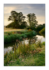 The Rother. (John Dominick) Tags: fittleworth river rother west sussex south downs national park