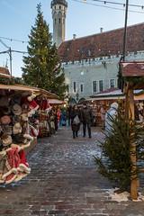 Christmas Market In Tallinn (AudioClassic) Tags: christmasmarket tallinn townhall square sprucetreebranch spruce tree people peaceful season holydays christmas architecture buildingexterior tourism tallinnoldtown nationallandmark