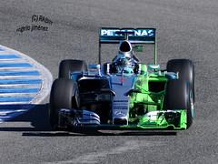 N. Rosberg - MERCEDES (RABIIT) Tags: vettel ferrari sauber ericcson rosberg bottas williams mercedes red bull ricciardo carlos saiz jr toro rosso jerez rabiit