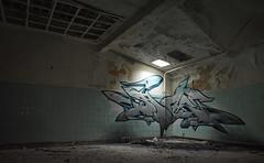 grown in the dark (Spoare153, Frankfurt (Oder), 2016) 2 (spoare153) Tags: spoare153 graffiti urbanart stylewriting graffitiart graffitistyle spoa 153 spoar artwork