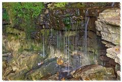 NOVEMBER 2016  NM1_1946_016677-22 (Nick and Karen Munroe) Tags: nikon nikond750 nickmunroe nickandkarenmunroe nickandkaren karenick23 karenick karenandnickmunroe karenmunroe karenandnick munroedesignsphotography munroedesigns munroephotography munroe ontario canada hiltonfalls hiltonfallsconservationarea walkhikefallshilton falls waterfalls waterdrops waterdropplets mossy moss rocks rockface halton haltonhills milton nikon2470f28